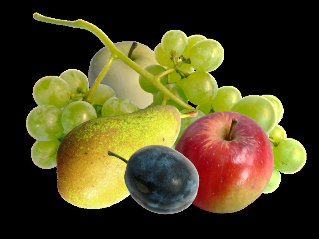Obst gemischt